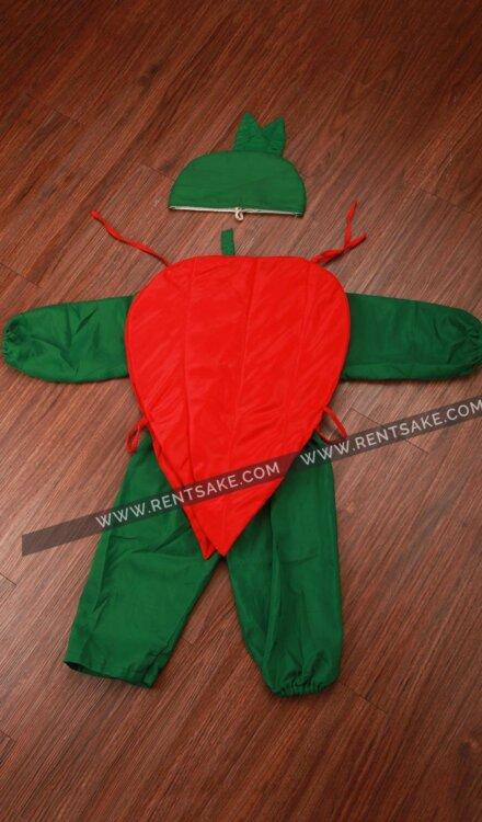 RED CHILLI COSTUME