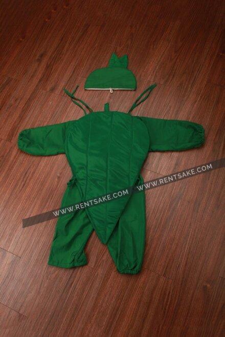 GREEN CHILLI COSTUME